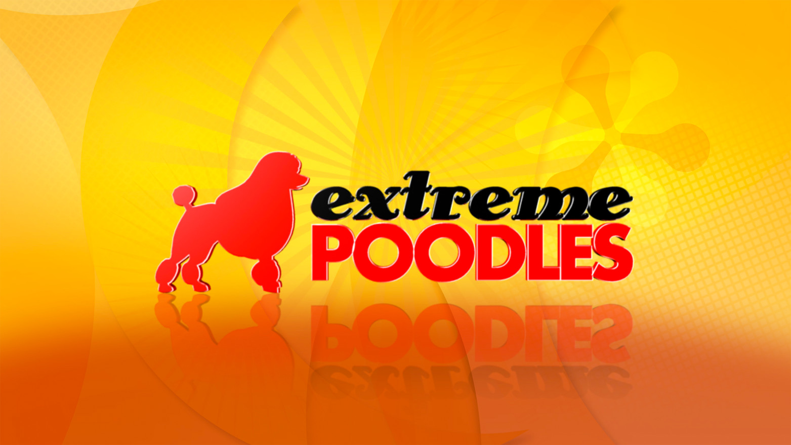 extream_poodles