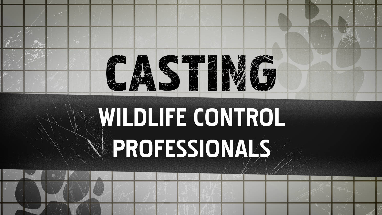 Casting for Wildlife Control Professionals
